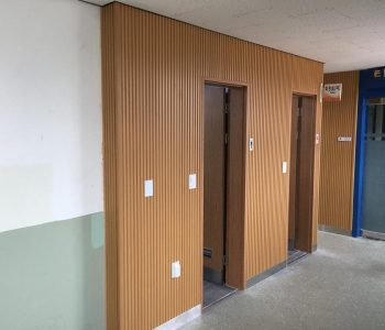 North Korea Project 2-compositewood-biowood